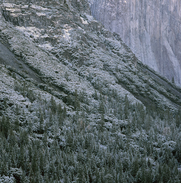 009-California_CA141016_Yosemite__Fresh_Snow_Vignette_02_Preview