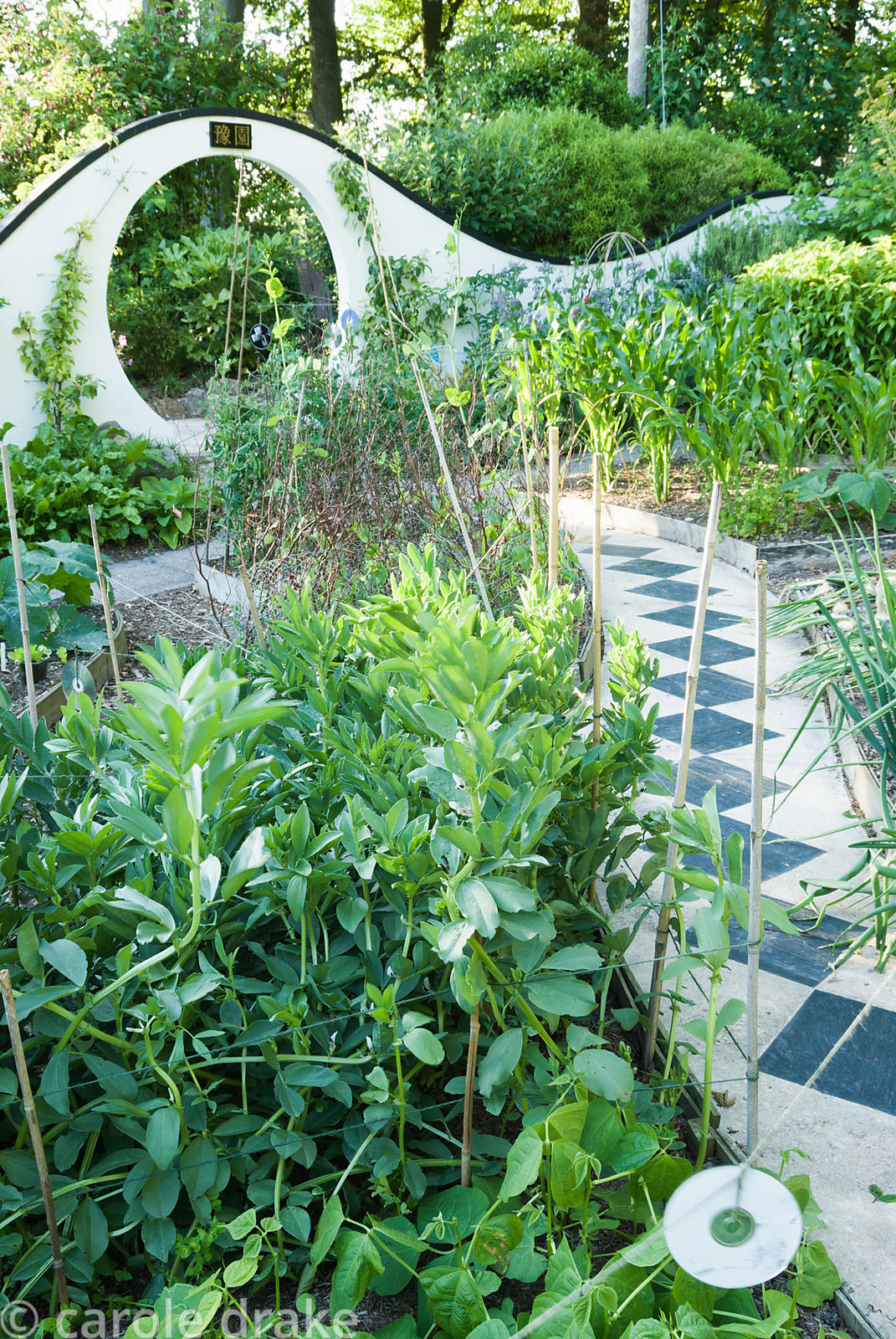 Kitchen garden features raised beds curved to fit the pathways, with curving wall pierced by moon gate beyond. Beggars Knoll,...