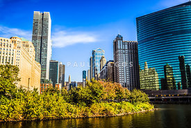 Picture of Chicago Buildings at Wolf Point