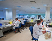 Hospital pathology laboratory