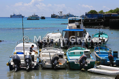Puerto Ayora harbour, Santa Cruz, Galapagos, with tourist and fishing boats