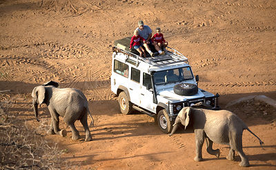 A man and children watching the Sheldrick elephants (Loxodonta africana) coming back to the stockade for the evening. David S...