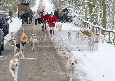 Cottesmore hounds arrive at the meet