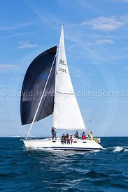 Maris Otter, GBR3519L, Legend 35.5, 20160731881