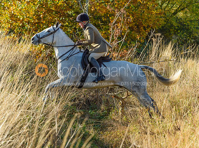 Rebecca Vernon near Denton. The Belvoir Hunt at the Kennels 13/11