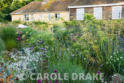 Central circular bed planted with a combination of grasses and herbaceous perennials including Verbena bonariensis, Eryngium ...