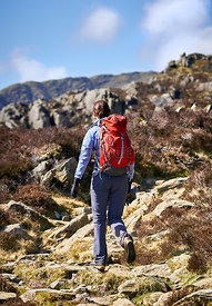 A female hiker and their dog ascending a rocky mountain path in the English Lake District.