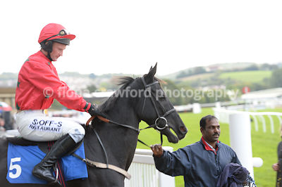 11th October 2013 Selling Hurdle with winner Run Along Boy