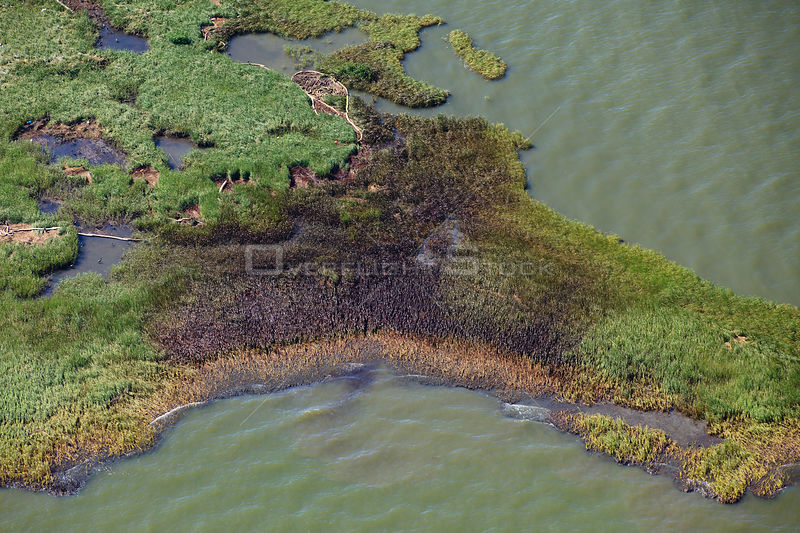 Aerial view of an oil covered island and displaced oil containment boom in the Barataria Bay area of the Mississippi River de...