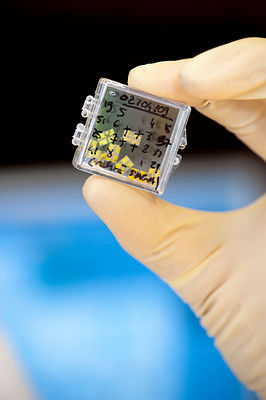 Diamant artificiel, Diamond Sensor Laboratory, CEA-LIST de Saclay