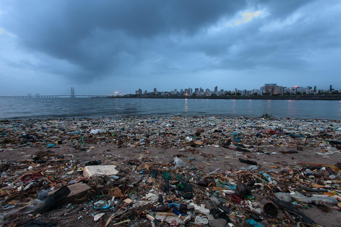 Garbage on the banks of Mahim Bay, Mumbai, India.