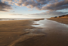 Golden Light, Formby