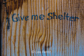 """Give me Shelter"" Graffiti in Boulder Shelter in Olympic National Forest"