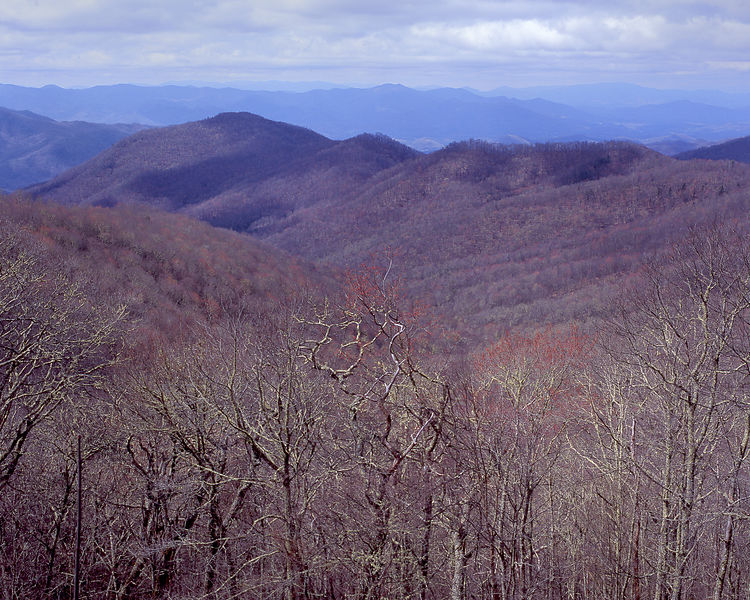 024-Blue_Ridge_D145189_Blue_Ridge_In_Early_Spring_035_Preview