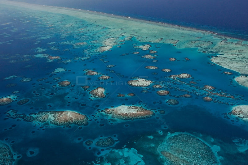 Aerial view of southern Belize barrier reef, showing Gladden Spit and Silk Cayes Marine Reserve. UNESCO Natural World Heritag...