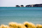 Old Harry Rocks from Studland
