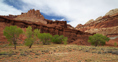 Escalante_Brice_Zion_crop_2018_0291
