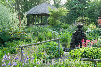 African inspired thatched hut surrounded by moisture loving plants including candelabra primulas, aruncus, irises, rodgersias...