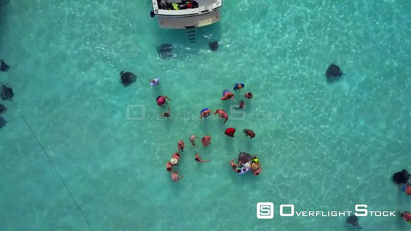 People at Stingray City Cayman Islands Caribbean