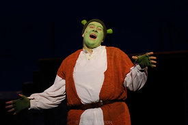 SCT-Shrek_018_copy