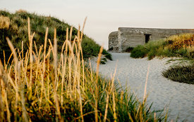 Danish bunker in the sand dunes