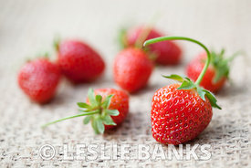 Strawberries on a Placemat