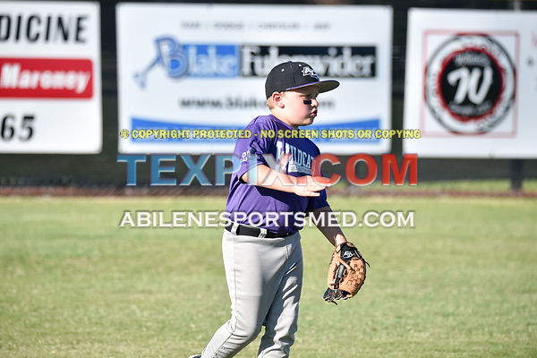 05-06-16_BB_LL_DIX_Farm_Wildcats_v_Gators_BR_538