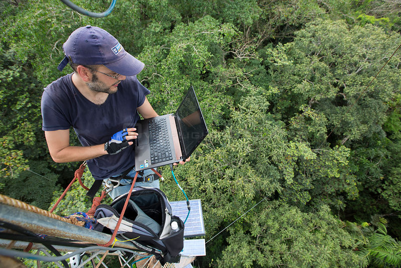 Man with laptop computer on  48m high  tower used to collect data about the CO2 and O2 levels. Tropical rainforest, Barro Col...