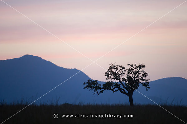 Dusk, Kidepo Valley National Park, Uganda