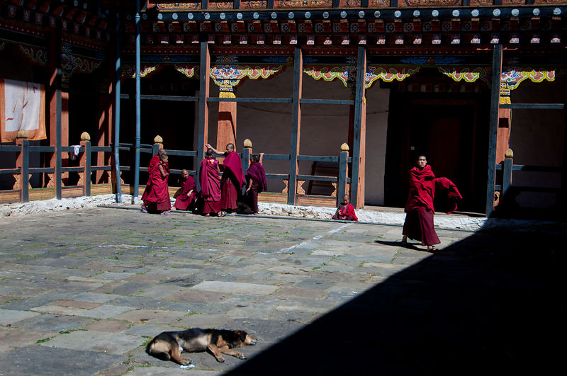 An everyday scene at a monastery in Bhutan.