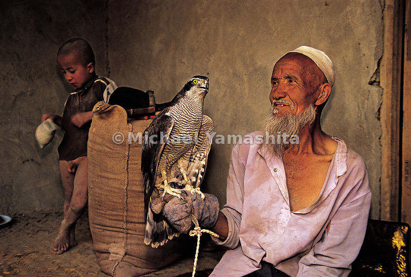 A falconer shows of his pride and joy. Hotan, China.