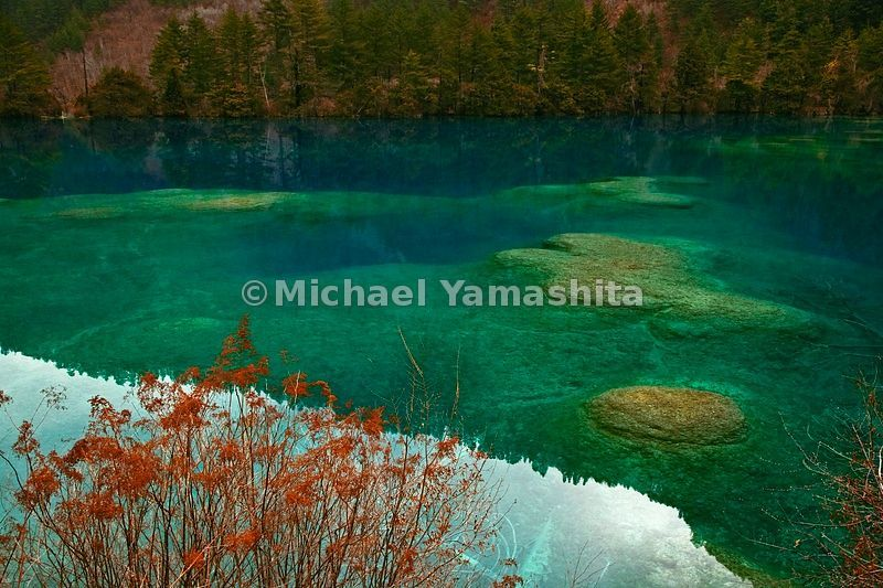 This is the other China. High in the mountains of Sichuan Province, in Jiuzhaigou Nature Reserve, rare plants and animals fin...