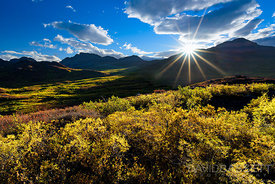 Autumn Sunrise | Denali Highway, AK
