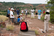 Tourists on Mapungubwe Hill, archaeological site, Mapungubwe National Park, South Africa
