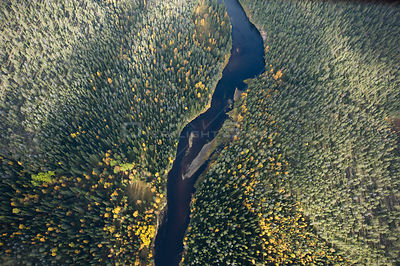 Aerial view of river flowing through the Oulanka National Park, Lapland, Finland, September 2008