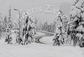 Ruka Snowstorm - Winding Road