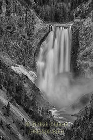 Lower Falls, Grand Canyon of the Yellowstone, Yellowstone National Park, WY, USA