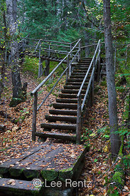 Rustic Staircase on Trail at Roderick Haig-Brown Provincial Park