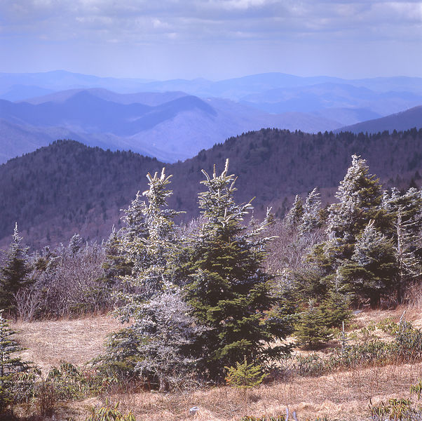 031-Blue_Ridge_D145200_Blue_Ridge_In_Early_Spring_-_Mount_Mitchell_Snowfall_007_Preview