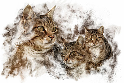 Art-Digital-Alain-Thimmesch-Chat-4