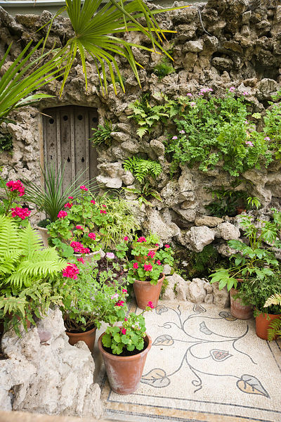 Victorian conservatory containing a tufa wall, recently restored, planted with ferns, and bright pelargoniums against the win...