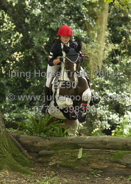 Iping Horse Trials BE90 (13028 to End Class)