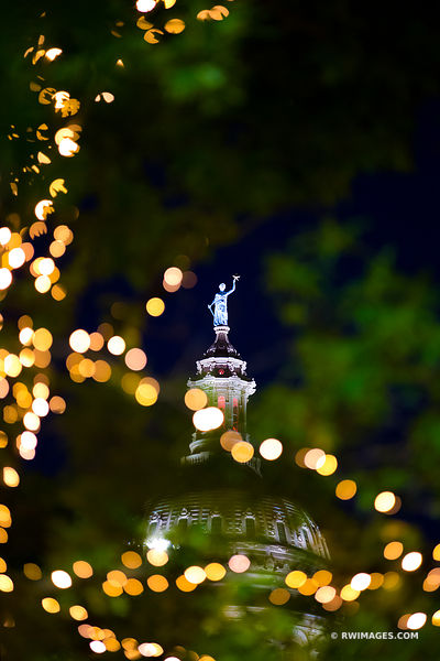 STATE CAPITOL BUILDING AUSTIN TEXAS NIGHT COLOR VERTICAL