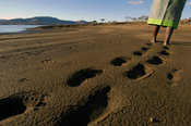 Woman walking barefoot on the lake shore, Spioenkop dam, KwaZulu-Natal, South Africa