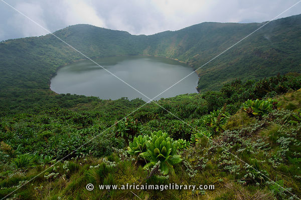 Bisoke crater lake on Mount Bisoke, Volcanoes National Park, Rwanda
