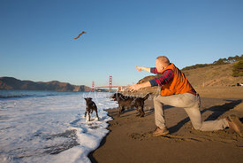 Man on Beach with Red Hair on Beach Throwing Stick for Dogs