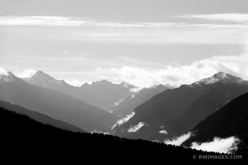 MOUNTAIN RIDGES FOREST HURRICANE RIDGE ROAD OLYMPIC NATIONAL PARK WASHINGTON BLACK AND WHITE