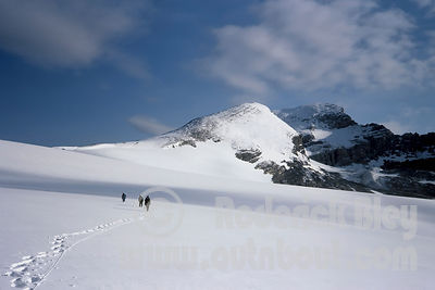 Hiking Across the Snowfield