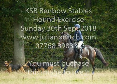 2018-09-30 KSB Benbow Stables Hound Exercise
