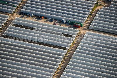 Aerial view of polytunnels, Coca, Spain